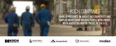 Koch Industries, Inc showing how they dominate the work force