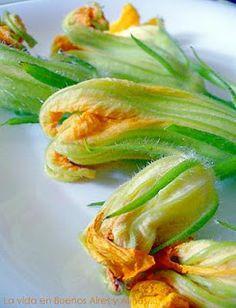 Flor da abobrinha (Cucurbita pepo): as flores da abobrinha são muito utilizadas na cozinha italiana e na mexicana. Na primeira, são recheadas ou empanadas e fritas. Na cozinha asteca, são um ingrediente das queijadas.