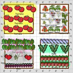 Garden Plan - 2013: Washington Kitchen Garden