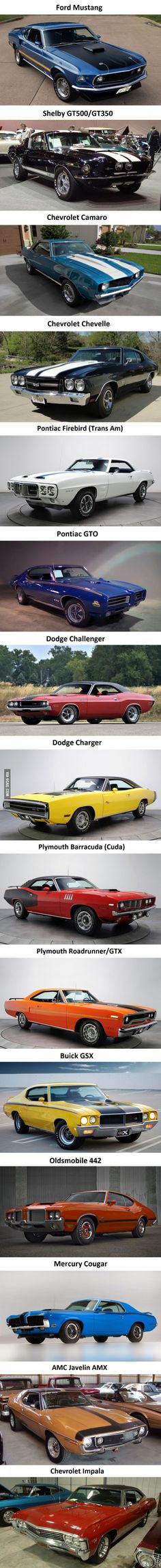 The Most Iconic Muscle Cars - dream cars - Auto Pontiac Gto, Chevrolet Chevelle, Chevy, Mustang Shelby, Ford Mustang, Sweet Cars, American Muscle Cars, Amazing Cars, Awesome