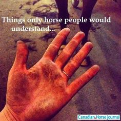 Funny Friday - May 30 2014 | Savvy Horsewoman
