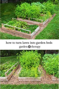 Garden With Waist Height Raised Gardening Beds Without Bending Over