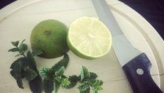 Šeříková limonáda – Le Monde Fleuri Mojito, Lime, Fruit, Food, Floral, Syrup, Alcohol, Limes, Essen