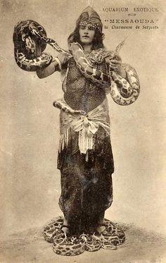 Messaouda, Snake Lady.