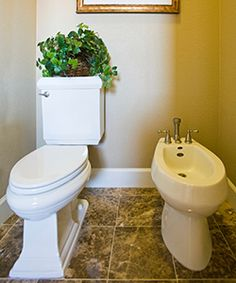 How does a bidet work? Learn how to use a bidet and why this efficient personal hygiene tool is a must-have for your home. http://products.mercola.com/bidet-use/