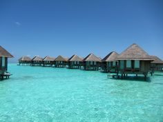 Love the over water bungalows