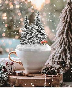 Merry Christmas, Christmas Coffee, Christmas Photos, Christmas Lights, Christmas Holidays, Christmas Wreaths, Christmas Cards, Xmas, Tree Decorations