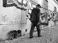 Street moments by Rui Palha