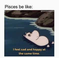 Pisces Love, Pisces Quotes, Zodiac Signs Pisces, Pisces Woman, Zodiac Signs Astrology, Zodiac Star Signs, Zodiac Facts, Mbti, Pisces Personality