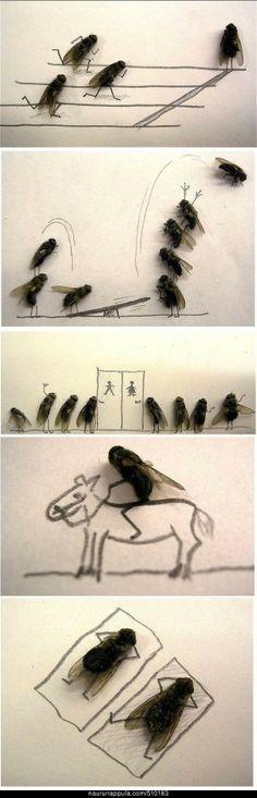 Kärpäset - hauskat kuvat - Naurunappula