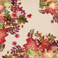 Victoria Nelson - Seasons Paper 37