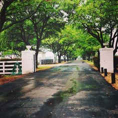 Snaps from Southfork Ranch, now up on the blog!
