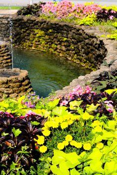 Discover the world through photos. Sandusky Ohio, Cleveland, Fountain, Cities, River, Usa, World, Outdoor, Outdoors