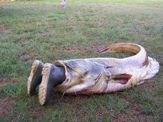 He wasn't a very good fishing buddy anyway :O