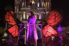 Sonic Butterfly Performance - San Miguel de Allende Mexico   Photography by Nick Laborde