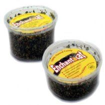Favorite Pet Products Enchantacat Organic Catnip Regular, Container, lg 2 oz.