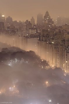Misty New York night photography sky night city lights trees buildings