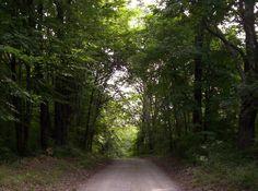 Vernors Road, Lapeer County Michigan