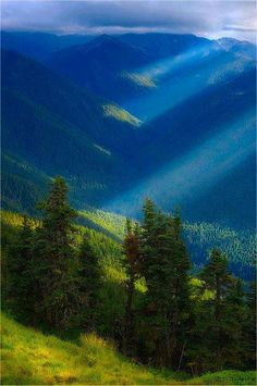 Great Smokey Mountains--can't wait to go back!