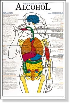 an analysis of harmful effects of smoking to body Harmful effects of smoking essay different harmful effects that your body can get from smoking 1,893 words 4 pages an analysis of the harmful effects of.