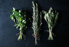 På en sommer producerer køkkenhaven nok krydderi til et helt års forbrug. Lad det IKKE gå til spilde! Følg denne enkle guide til tørring af krydderurter