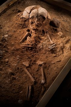 Archaeologists in Germany have uncovered the bodies of children and of one adult man who was buried, strangely, standing upright.