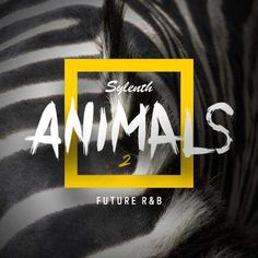 Sylenth Animals 2 Future RnB DiSCOVER | June/11th/2017 | 2.82 MB 'Sylenth Animals 2 - Future R&B' is the second part of this Sylenth best selling seri