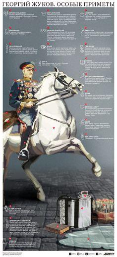 Смотрите в инфографике АиФ.ru подборку особых примет маршала Советского Союза Георгия Жукова.