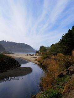 Neskowin Creek by Misty Garrick Miller, via Flickr