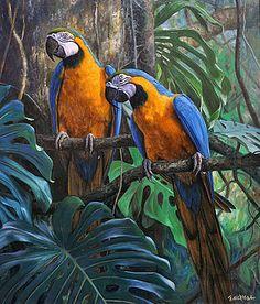 treasures-of-the-rainforest-gabriel-hermida.jpg (299×350)