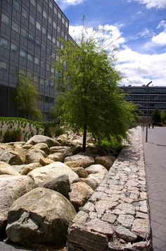 Outwash Basin at MIT
