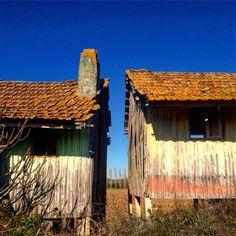 The space between! #portugal #ribatejo #alpiarça #avieiros #casa #lugaresabandonados #casasabandonadas #abandonado #decadencia #abandoned…