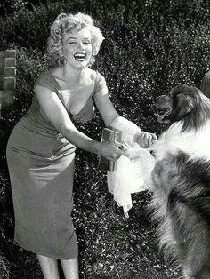 Marilyn Monroe y Lassie
