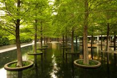 Dan Kiley - Fountain Place, Dallas, TX, photograph © Alan Ward, 2013: