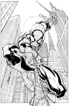 Spider-man | J. Scott Campbell
