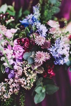 Pretty purple blooms