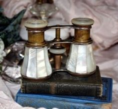 *Vintage Mother of Pearl Opera Glasses