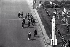 This is a general view of the running of the 99th Kentucky Derby with Secretariat ridden by Ron Turcotte winning and followed by Sham with Laffit Pincay.