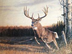 Cabin Artwork by Des McCaffrey Wildlife Paintings, Wildlife Art, Animal Paintings, Deer Paintings, Original Paintings, Hirsch Wallpaper, Deer Wallpaper, Whitetail Deer Pictures, Whitetail Deer Hunting