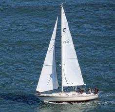 An aft cockpit sloop rigged cruising boat under full sail in San Francisco Bay.
