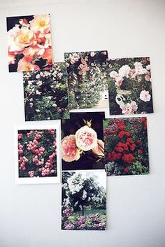 Floral picture collage for wall decoration