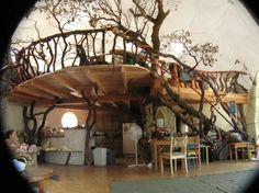 In-house tree house :-)
