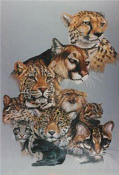 big cat artwork | The big cat artwork of Barbara A. Keith creates a world beyond sensory ...