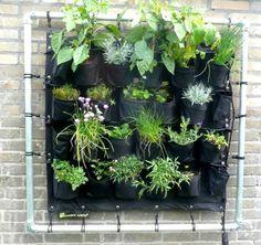 De Eetbare Wand is geschikt om verticaal je eigen groenten, kruiden of (eetbare) bloemen te kweken en oogsten. Ideaal dus voor iedereen die niet de ruimte heeft om in de grond te wroeten.