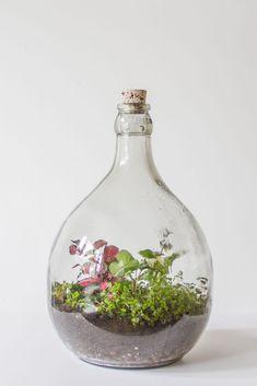 flessengroen & flessentuin