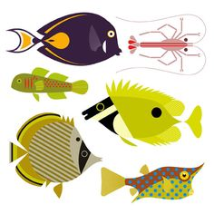 Scott Partridge - Illustration - reef fish sequence illustration obtain Textile Prints, Textiles, Fish Illustration, People Illustration, Organic Art, Fish Drawings, Animal Crafts For Kids, Fish Patterns, Fish Print