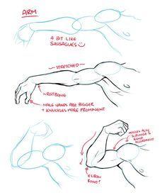 Anatomy Sketches, Anatomy Drawing, Anatomy Art, Art Drawings Sketches, Human Anatomy, Arm Anatomy, How To Draw Anatomy, Face Drawings, Body Anatomy