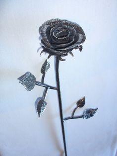 Blacksmith rose
