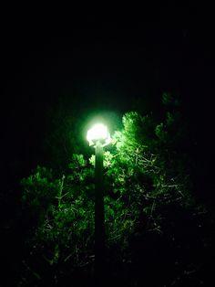 Nights at an Inn