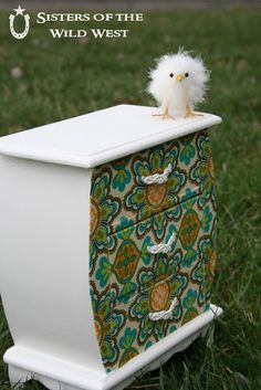 Sisters of the Wild West: Jewelry Box Makeover